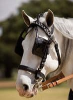 Leather single driving harness with collar - Keiffer model